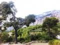 Makarska 4